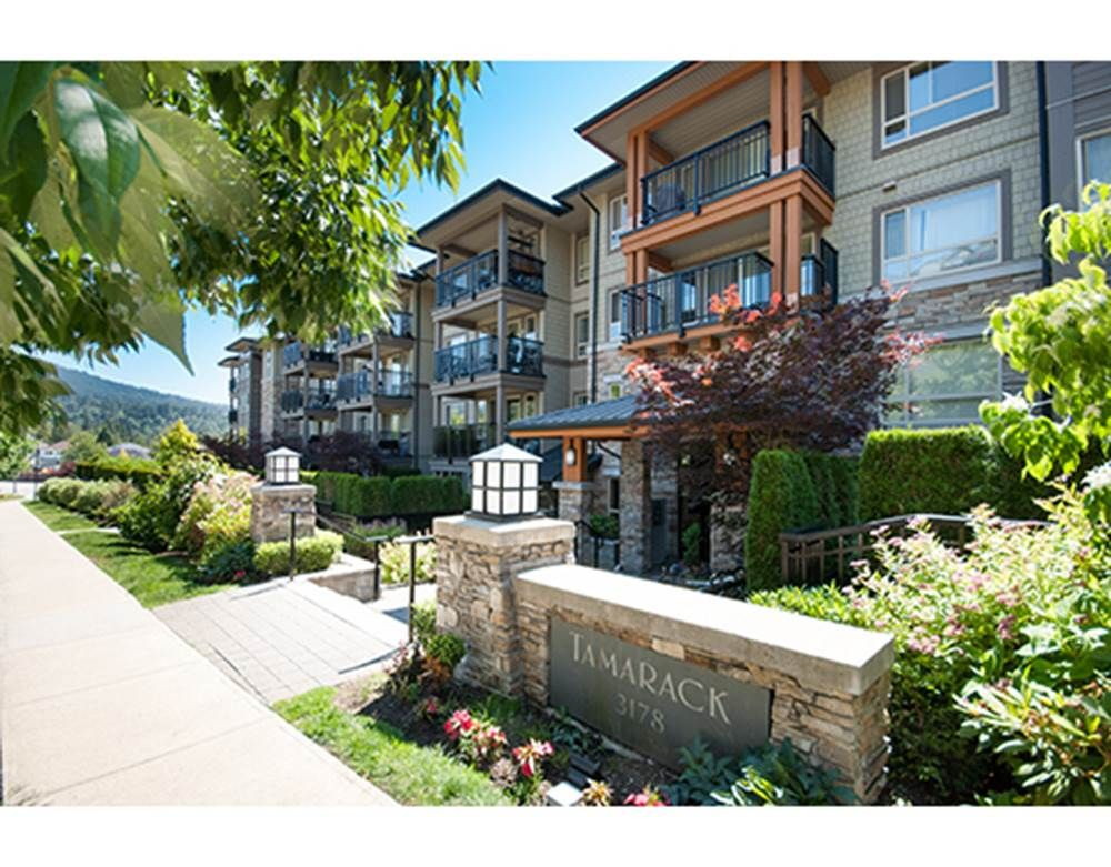 "Main Photo: 503 3178 DAYANEE SPRINGS Boulevard in Coquitlam: Westwood Plateau Condo for sale in ""Tamarack"" : MLS®# R2280156"