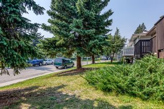 Photo 4: 5258 19 Avenue NW in Calgary: Montgomery Semi Detached for sale : MLS®# A1131802