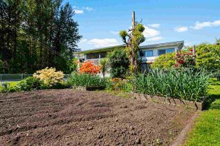 Photo 25: 45378 PRINCESS Avenue in Chilliwack: Chilliwack W Young-Well House for sale : MLS®# R2591910