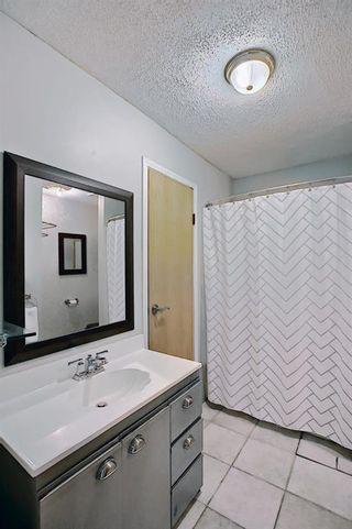 Photo 28: 52 Everglade Drive SE: Airdrie Semi Detached for sale : MLS®# A1139182