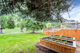 Photo 30: 184 MAPLE COURT Crescent SE in Calgary: Maple Ridge Detached for sale : MLS®# A1080744