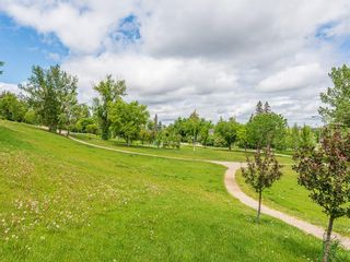 Photo 43: 525 SALEM Avenue SW in Calgary: Scarboro Detached for sale : MLS®# C4255093
