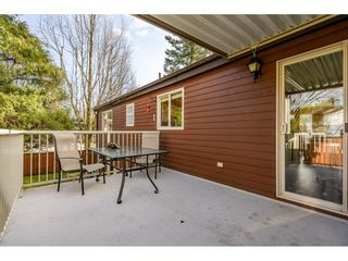 Photo 28: 14951 92A Avenue in Surrey: Fleetwood Tynehead House for sale : MLS®# R2539552
