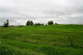 Photo 7: Lot 19 Con 2 in Amaranth: Rural Amaranth Property for sale : MLS®# X4152768