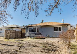 Photo 41: 3042 30A Street SE in Calgary: Dover Detached for sale : MLS®# A1097578