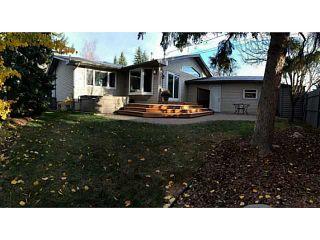 Photo 18: 12 LAKE LINNET Close SE in Calgary: Lake Bonavista Residential Detached Single Family for sale : MLS®# C3641597