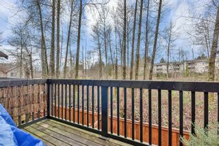 Photo 23: 198 16177 83 Avenue in Surrey: Fleetwood Tynehead Townhouse for sale : MLS®# R2534756