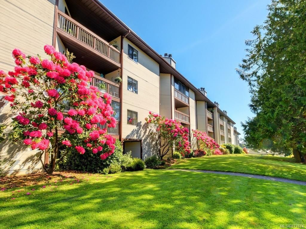 Main Photo: 310 69 W Gorge Rd in : SW Gorge Condo for sale (Saanich West)  : MLS®# 877674