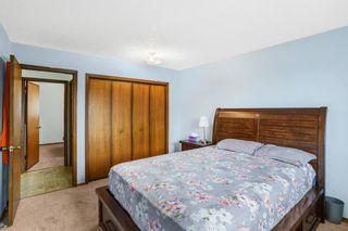 Photo 15: 4 Castlebury Way NE in Calgary: Castleridge Detached for sale : MLS®# A1146595