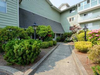 Photo 17: 402 1490 Garnet Rd in VICTORIA: SE Cedar Hill Condo for sale (Saanich East)  : MLS®# 767199