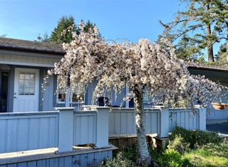 Photo 25: 267 Park Dr in : GI Salt Spring House for sale (Gulf Islands)  : MLS®# 882391