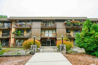 "Photo 1: 317 1000 KING ALBERT Avenue in Coquitlam: Central Coquitlam Condo for sale in ""ARMADA ESTATES"" : MLS®# R2498846"