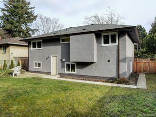 Photo 18: 3590 Shelbourne St in VICTORIA: SE Cedar Hill House for sale (Saanich East)  : MLS®# 805260