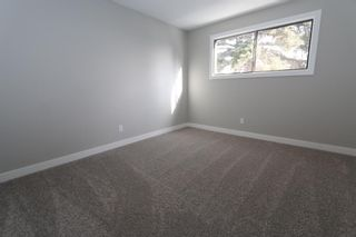 Photo 18: 547 Templeby Place NE in Calgary: Temple Detached for sale : MLS®# A1071164