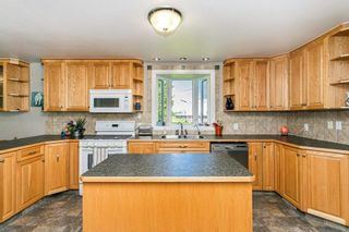 Photo 11: 50529 RGE RD 220: Rural Leduc County House for sale : MLS®# E4249707