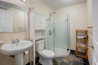 Photo 16: 268 COPPERFIELD Heights SE in Calgary: Copperfield Detached for sale : MLS®# C4302966