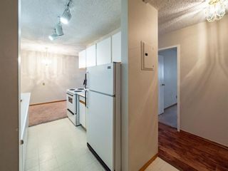 Photo 5: 213 3420 50 Street NW in Calgary: Varsity Apartment for sale : MLS®# A1095865