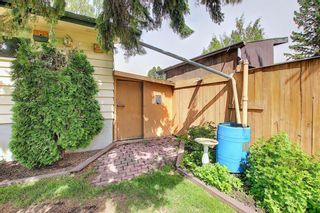 Photo 42: 2952 Lindsay Drive SW in Calgary: Lakeview Detached for sale : MLS®# A1115175
