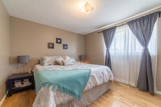 Photo 18: 49 Templeson Crescent NE in Calgary: Temple Detached for sale : MLS®# A1089563