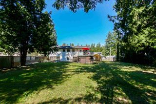 """Photo 19: 4072 202A Street in Langley: Brookswood Langley House for sale in """"Brookswood"""" : MLS®# R2379406"""
