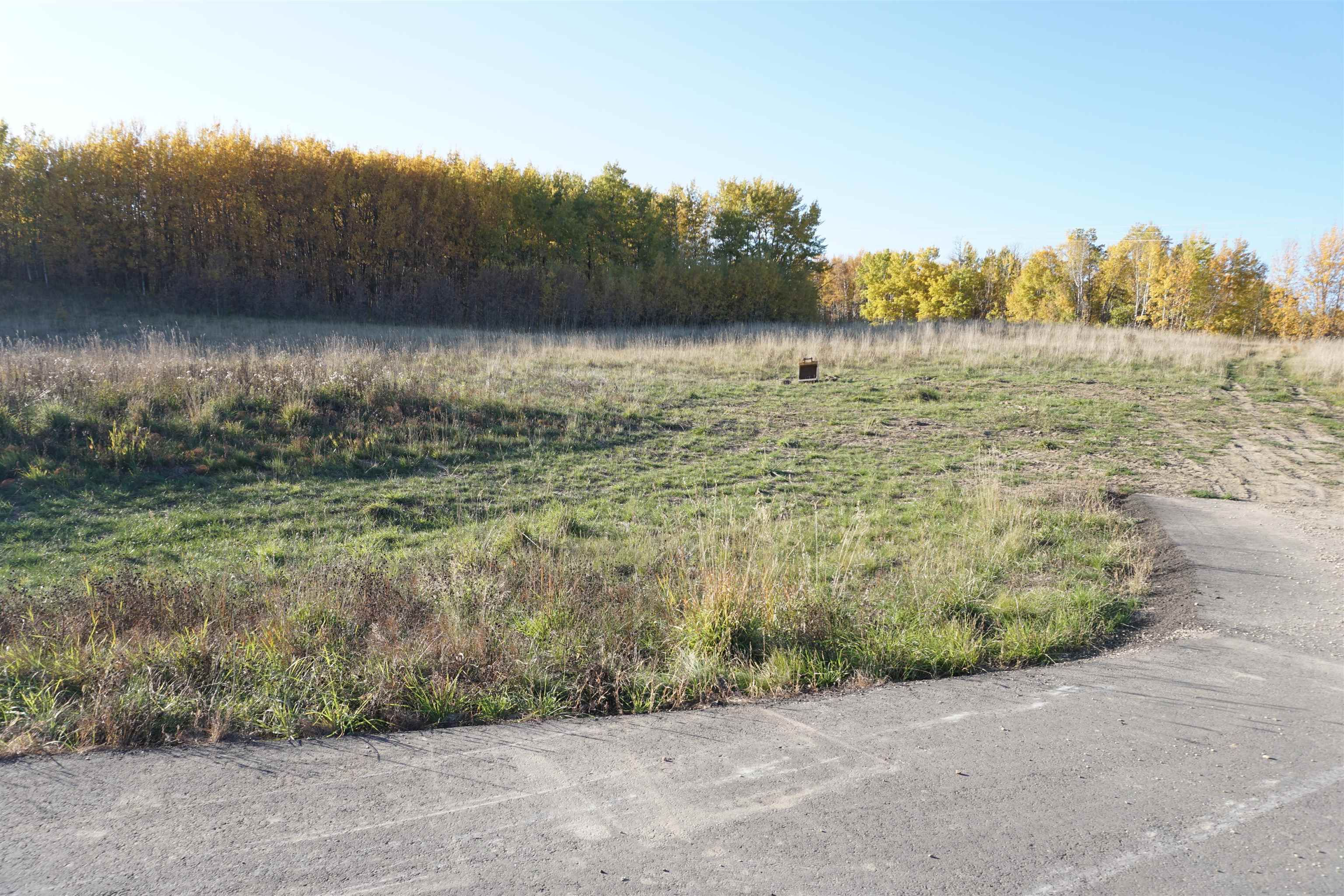 Main Photo: 31 53214 RR13: Rural Parkland County Rural Land/Vacant Lot for sale : MLS®# E4266458