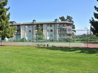 Photo 21: 308 73 W Gorge Rd in VICTORIA: SW Gorge Condo for sale (Saanich West)  : MLS®# 818279