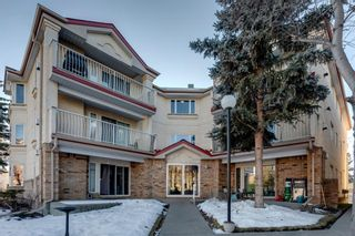 Photo 1: 313 1723 35 Street SE in Calgary: Albert Park/Radisson Heights Apartment for sale : MLS®# A1061894