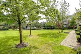 Photo 16: 101 4783 DAWSON STREET - LISTED BY SUTTON CENTRE REALTY in Burnaby: Brentwood Park Condo for sale (Burnaby North)  : MLS®# R2221957