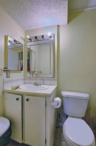 Photo 35: 180 Castledale Way NE in Calgary: Castleridge Detached for sale : MLS®# A1135509