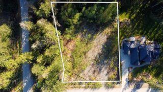 "Photo 4: 12905 246 Street in Maple Ridge: Websters Corners Land for sale in ""Allco Park"" : MLS®# R2576635"