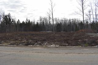 Photo 8: Lot 6 Back Road in Lansdowne: 401-Digby County Vacant Land for sale (Annapolis Valley)  : MLS®# 202100793