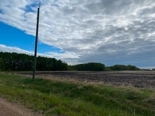 Photo 3: 55117 RR235: Rural Sturgeon County Rural Land/Vacant Lot for sale : MLS®# E4247528