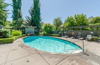 """Photo 17: 122 15168 36 Avenue in Surrey: Morgan Creek Townhouse for sale in """"Solay"""" (South Surrey White Rock)  : MLS®# R2185197"""