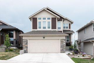 Photo 40: 277 JUMPING POUND Terrace: Cochrane Detached for sale : MLS®# C4196880