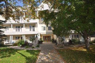 Main Photo: 204 11650 79 Avenue in Edmonton: Zone 15 Condo for sale : MLS®# E4262874