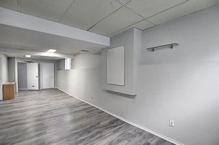 Photo 23: 125 Martin Crossing Way NE in Calgary: Martindale Detached for sale : MLS®# A1117309