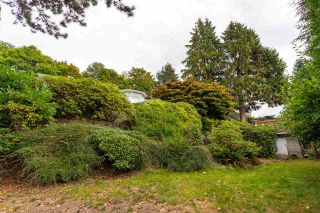 "Photo 16: 301 N HYTHE Avenue in Burnaby: Capitol Hill BN House for sale in ""CAPITOL HILL"" (Burnaby North)  : MLS®# R2531896"