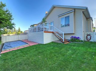 Photo 31: 741 Citadel Drive NW in Calgary: Citadel Detached for sale : MLS®# C4260865