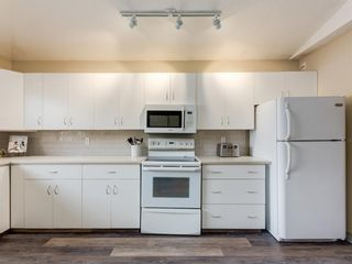 Photo 6: 533 50 Avenue SW in Calgary: Windsor Park Detached for sale : MLS®# A1063858