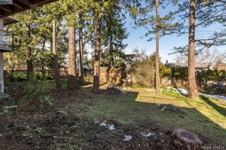 Photo 30: 1116 Nicholson St in VICTORIA: SE Lake Hill House for sale (Saanich East)  : MLS®# 806715