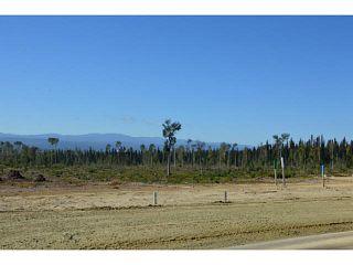"""Photo 13: LOT 16 BELL Place in Mackenzie: Mackenzie -Town Land for sale in """"BELL PLACE"""" (Mackenzie (Zone 69))  : MLS®# N227309"""