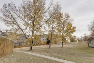 Photo 19: 701 1540 29 Street NW in Calgary: St Andrews Heights Apartment for sale : MLS®# A1153343