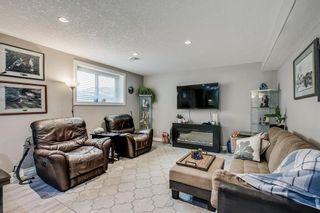 Photo 42: 234 Canoe Square SW: Airdrie Detached for sale : MLS®# A1043547