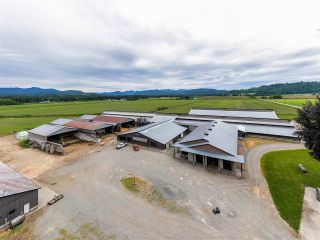 Photo 14: 27625 GRAY Avenue: Agri-Business for sale in Abbotsford: MLS®# C8038691