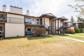 Photo 38: 2107 SADDLEBACK Road in Edmonton: Zone 16 Carriage for sale : MLS®# E4243171