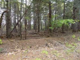 Photo 3: Lots 36 & 37 Hidden Hills Road in Labelle: Vacant Land for sale : MLS®# 202116791