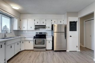 Photo 13: 3812 49 Street NE in Calgary: Whitehorn Detached for sale : MLS®# A1054455
