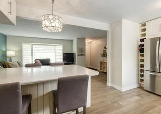 Photo 9: 5812 21 Street SW in Calgary: North Glenmore Park Detached for sale : MLS®# A1128102