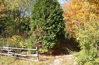 Photo 1: 652 Bush Street Part 4 Street in Caledon: Rural Caledon Property for sale : MLS®# W4689522