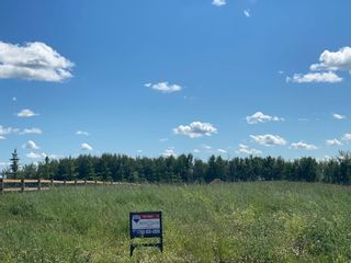 Photo 7: 490 50450 Range Road 234: Rural Leduc County Rural Land/Vacant Lot for sale : MLS®# E4208603